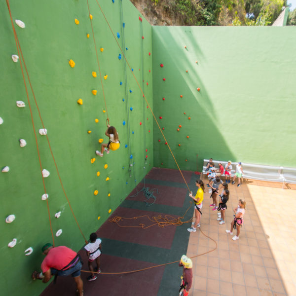 Climbing wall 519