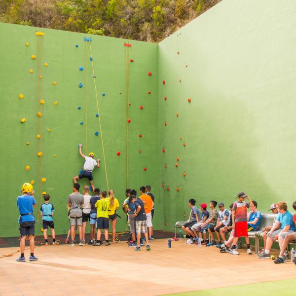 Climbing wall 515