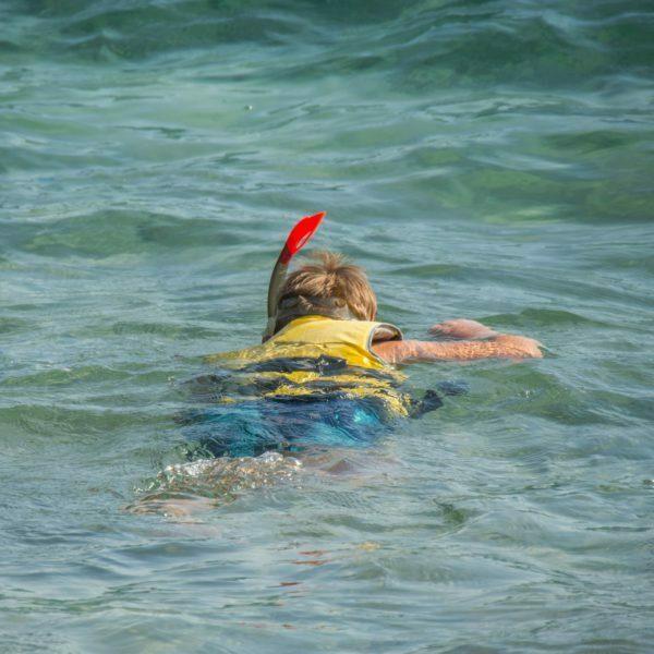 Snorkel 611