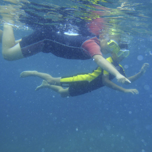Snorkel 645